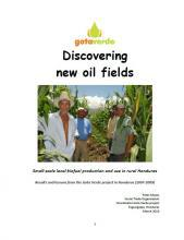 Discovering new oil fields, Small-scale local biofuel production and use in rural Honduras